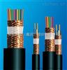 安徽天康ZR-DJYPVP 24*2*1.5电子计算机阻燃电缆