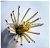 安徽天康ZR-KVVP 37*1.5 阻燃型屏蔽控制电缆