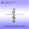 电伴热式磁浮子液位计